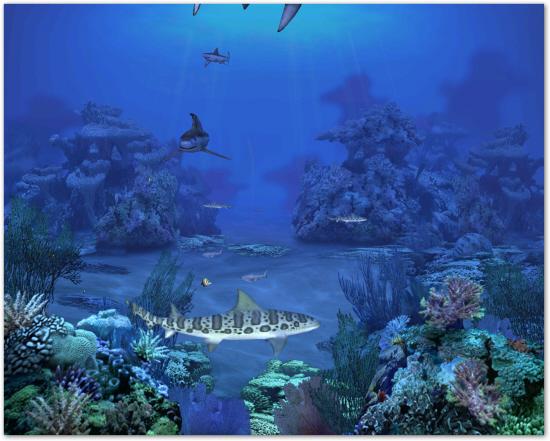 Tiburones 2 0 scenescreen salva pantallas full con serial descargar gratis - Salva escritorio ...